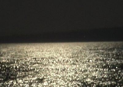 mer scint